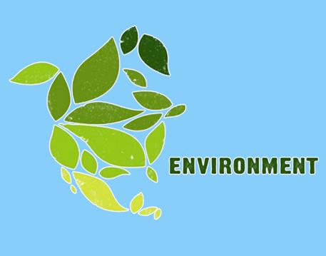 C - Environment